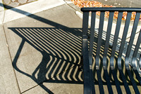 Bench and Shadow