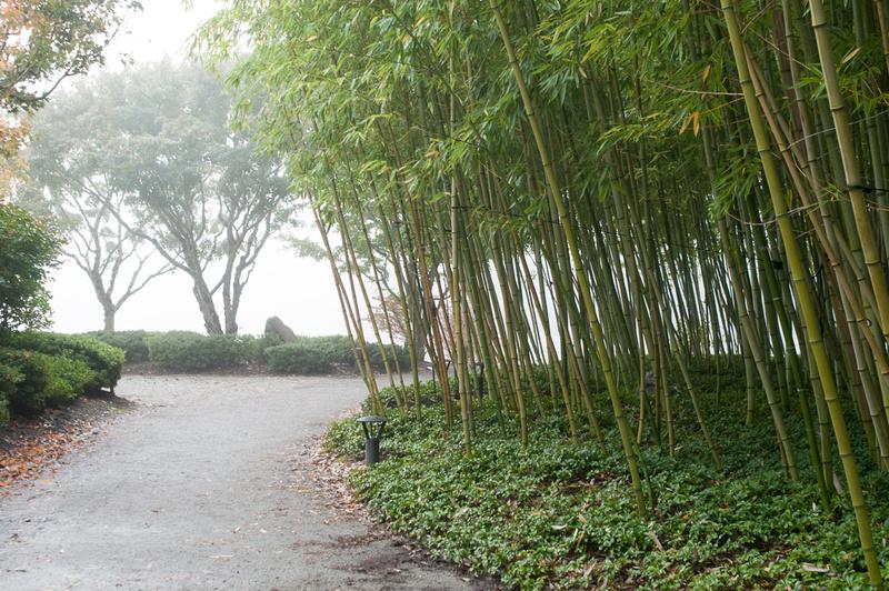 Nissho Iwai Gardens